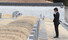 <b>눈물 닦는 안철수</b><br> 바른미래당 안철수 전 의원이 20일 오후 광주 북구 운정동 국립5·18민주묘지를 찾아 참배 후 눈물을 닦고 있다. 광주/연합뉴스