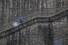 <b>눈 오는 날, 기생충 계단 걷는 이낙연</b><br> 4·15 총선 서울 종로에 출마하는 이낙연 전 국무총리가 17일 오전 낙후지역 관광지 개발 방안 관련 현장방문을 위해 서울 종로구 부암동을 찾은 뒤 영화 ''기생충''의 촬영지인 자하문터널 입구 계단을 걷고 있다. 연합뉴스