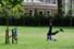 <b>코로나19 봉쇄 완화에 공원 찾은 런던 시민</b><br>  영국의 신종 코로나바이러스 감염증(코로나19) 봉쇄 조치가 완화되자 26일(현지시간) 런던의 세인트 제임스 파크에서 한 남자가 운동을 하고 있다. 런던 AFP/연합뉴스