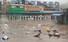 폭우가 쏟아진 8일 오전 경남 하동군 화개 공영버스터미널 인근 도로가 침수돼 있다.연합뉴스