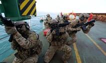 '호르무즈 파병' 미국·이란 사이 절충안 택했다