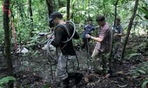 'CO₂ 저장소' 열대 토양, 기후변화의 또 다른 걱정거리