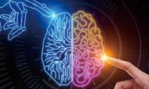 [전치형의 과학 언저리] AI 자동화, 인간의 대체인가 보조인가