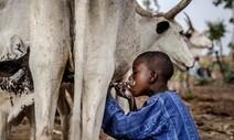 '기후변화+코로나19' 세계 기아 인구, 1억3천만명 늘어