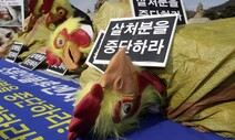 """[포토] 한국동물보호연합 """"AI 예방적 살처분을 중단하라"""""""