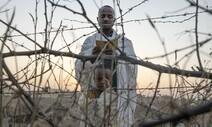에티오피아 티그레이 내전…4개월 만에 1900명 학살