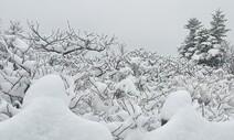 봄비가 데려온 설악산 눈…쌀쌀하고 비 흩뿌리는 5월 첫 주말