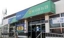 금융당국, '셀프대출' 농협·축협 직원들 제재 절차 착수