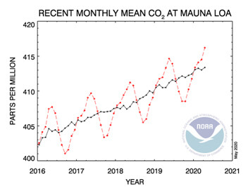 미국기상청에서 관측한 하와이 마우나로아 이산화탄소 월평균 농도의 최근 변화(빨간 선).