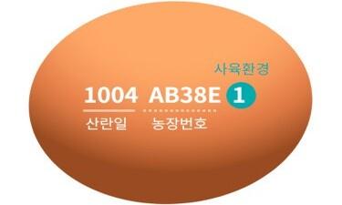 달걀에 새긴 숫자들, 무슨 뜻인지 알고 구입하시나요?