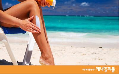 산호초를 보호하고, 당신 피부도 보호하려면?