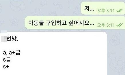 """""""n번방·박사방 영상 팝니다"""" 성착취물 재판매 20대 구속"""