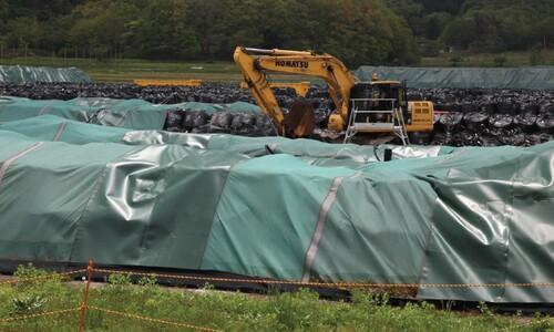 후쿠시마 방사능 오염 그대론데…도쿄올림픽 성화 봉송을?