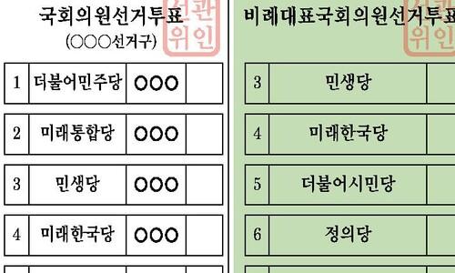 """'민주당만 빼고' 임미리 교수 """"위성정당 보조금 지급 위헌"""" 헌소"""