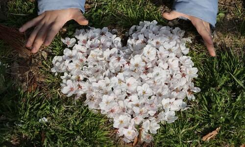 [이 순간] '작은 것이 아름답다'…우리 마을 봄 풍경