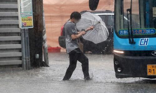 오늘 밤부터 호남·충청에 최고 300㎜ 이상 '물폭탄' 터진다