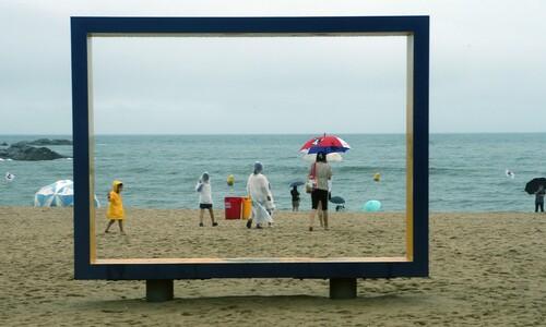 '우산 아래, 한 장의 추억'
