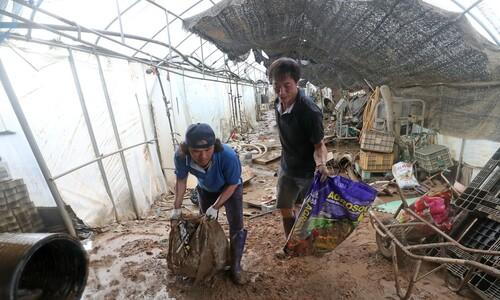 기록적 폭우로 24명 사상·10명 실종…충북선 외 6개 노선 복구