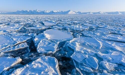 '북극 바다얼음' 15년 뒤엔 지구에서 사라진다