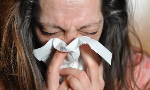 코로나 방역에 남반구 독감이 사라졌다...북반구에도 통할까