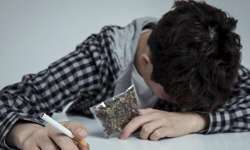 720조 기금운용 국민연금공단 직원 4명 대마초 흡연 적발