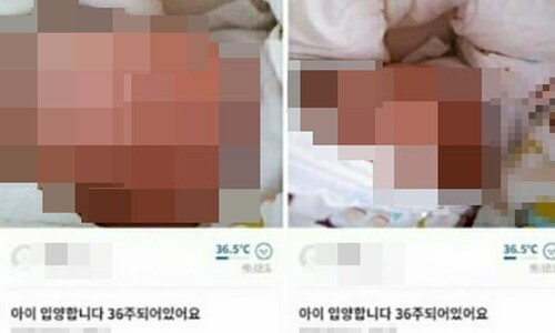 """'영아 입양 게시글' 산모·아이 헤어져…""""미혼모 지원 개선해야"""""""