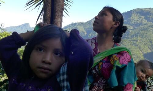 커피는 불평등으로 오염된 땅에서 자란다