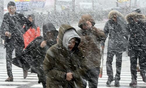 '따뜻한 겨울' 작년보단 올 겨울 춥다…'장기 한파' 가능성도