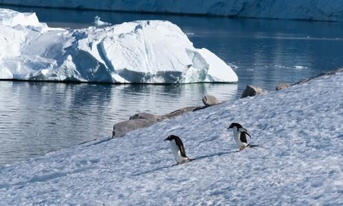 빙하가 온난화로 녹는다고?…빙하기에도 빙하는 무너졌다