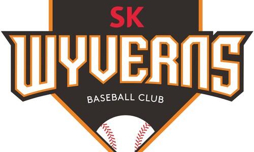 SK와이번스 야구단, 신세계 이마트에 팔린다
