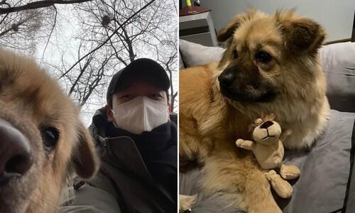 """""""이게 누구지~"""" 배우 조승우가 입양한 유기견 이름은 '곰자'"""