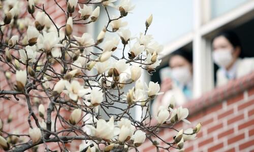 """""""봄이 왔어요"""""""