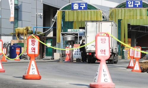 국내서 경로 모르는 '남아공발 변이' 첫 확인