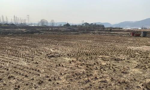 [단독] 호남 LH직원들도 광명 땅 매입…'원정 투기'까지 했나