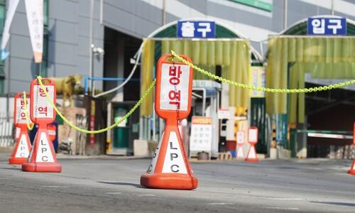 [속보] 코로나19 신규 확진자 446명…다시 400명대