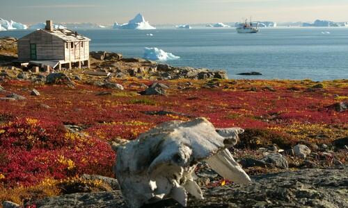 새하얀 그린란드, 한때는 초록빛 땅이었다