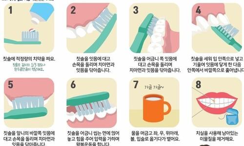 광주·세종 '4학년 어린이' 대상 치과 예방진료 시범사업