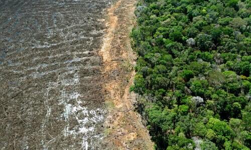 지구에서 생태계 온전한 곳 3%뿐…이조차 과대평가?