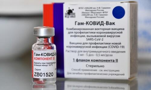 스푸트니크 백신, 러시아와 계약하면 다음달 도입된다지만…