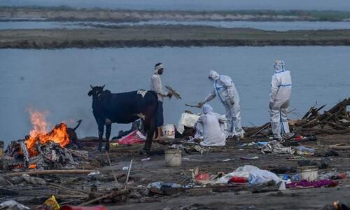 인도 갠지스에 시신 40여구 떠내려와…코로나 사망자 추정
