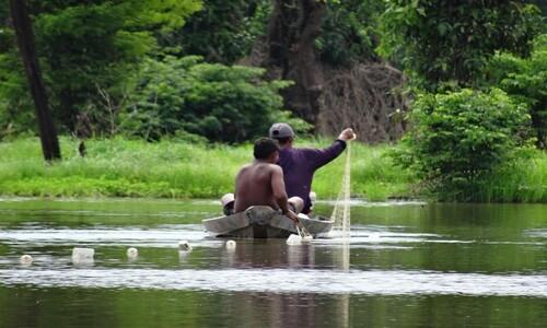'세상에서 가장 풍요롭다'는 아마존 강 어민도 배곯는다