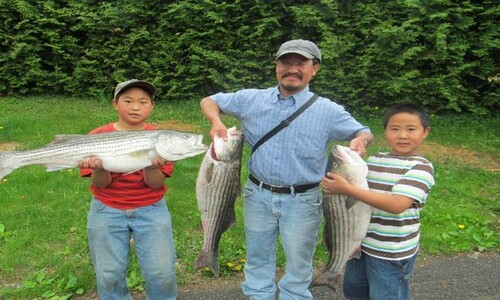 물고기 두마리로 40명이 나누기 충분해요