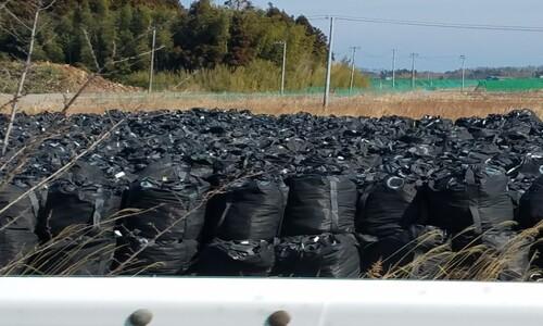 일본 정부, 후쿠시마 오염토에 '채소 재배' 실험 논란