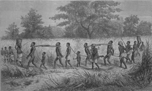 아프리카에 간 세실 로드와 리빙스턴, 누가 영웅인가