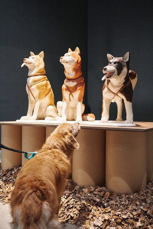 '모두를 위한 미술관, 개를 위한 미술관'의 온라인 소개 영상에 나오는 전시장 광경. 반려견이 개 조형물을 감상하고 있다.