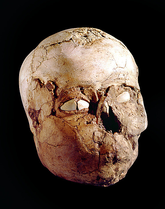 해골을 석고 뜬 모습, 예리코(텔 에스 술탄). 기원전 8600년부터 최대 기원전 6200년까지 당시 예리코에서는 특별한 제의와 해골 숭배가 있었던 것으로 보인다. 글항아리 제공