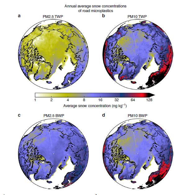 북극 눈 속의 타이어 마모 미세플라스틱(TWP) 농도는 PM2.5의 경우 눈 1㎏당 1∼10나노그램, PM10은 4∼80나노그램이다. 브레이크 패드 마모 미세플라스틱(BWP) 농도는 PM2.5가 2∼30나노그램, PM10이 2∼70나노그램이다. <네이처 커뮤니케이션스> 제공