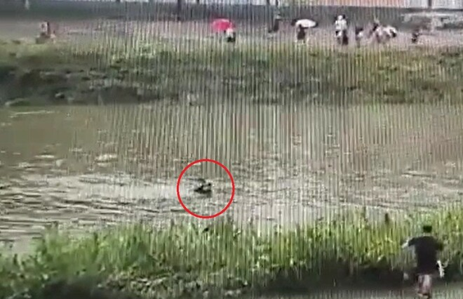 급류서 8살 아동 구한 '의로운 경찰', 11년 전 순직한 경찰관의 아들