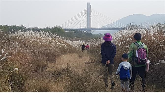 가족 단위로 참가가 많은 세종시 강길 산길 탐방.