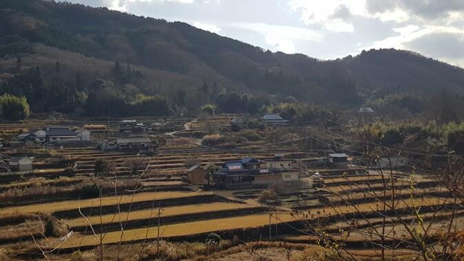 고령화로 황폐해진 미마사카의 농촌 풍경은 지역 살리기 협력대원이 들어오면서 되살아나기 시작했다. 대원들은 일본 전통 농법인 다나다 농법으로 논을 경작한다.
